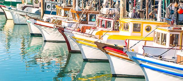 Bateaux amarrés dans une marina.