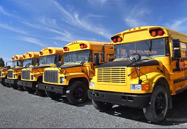 Une rangée d'autobus scolaires jaunes garés.